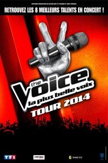 the voice tour 2014